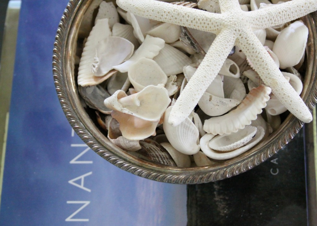 Nantucket Book & Shells | Love of Home