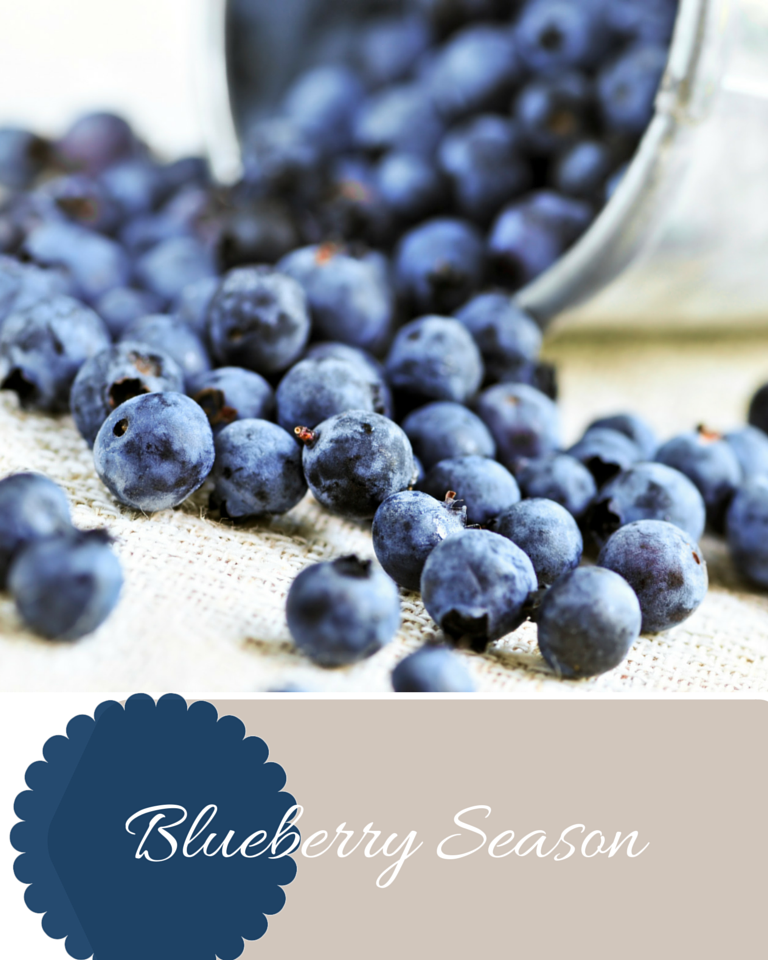 Free Printable Blueberry Labels | Love of Home
