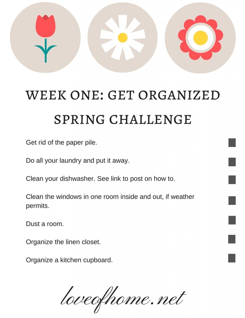 Week One Get Organized Challenge | Love of Home