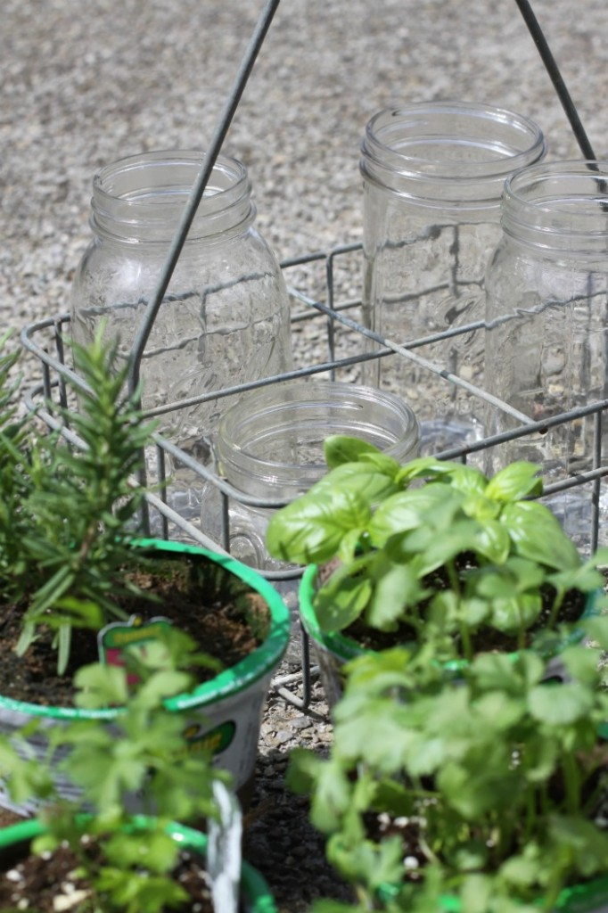 Mason Jar Herb Garden Love of Home