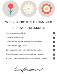 Week Four Get Organized Spring Challenge