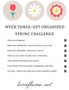 Week Three Get Organized Spring Challenge