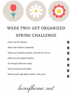 Get Organized Week Two Spring Challenge