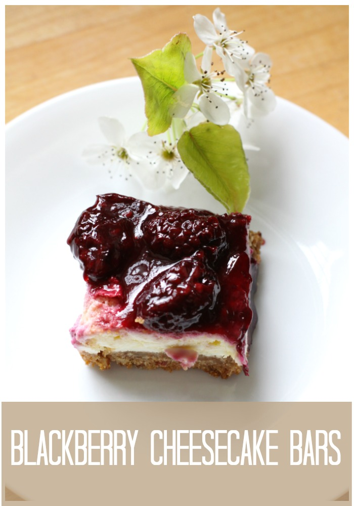 Blackberry Cheesecake Bars lLove of Home
