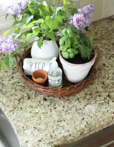 Easy Kitchen Decor With Herbs