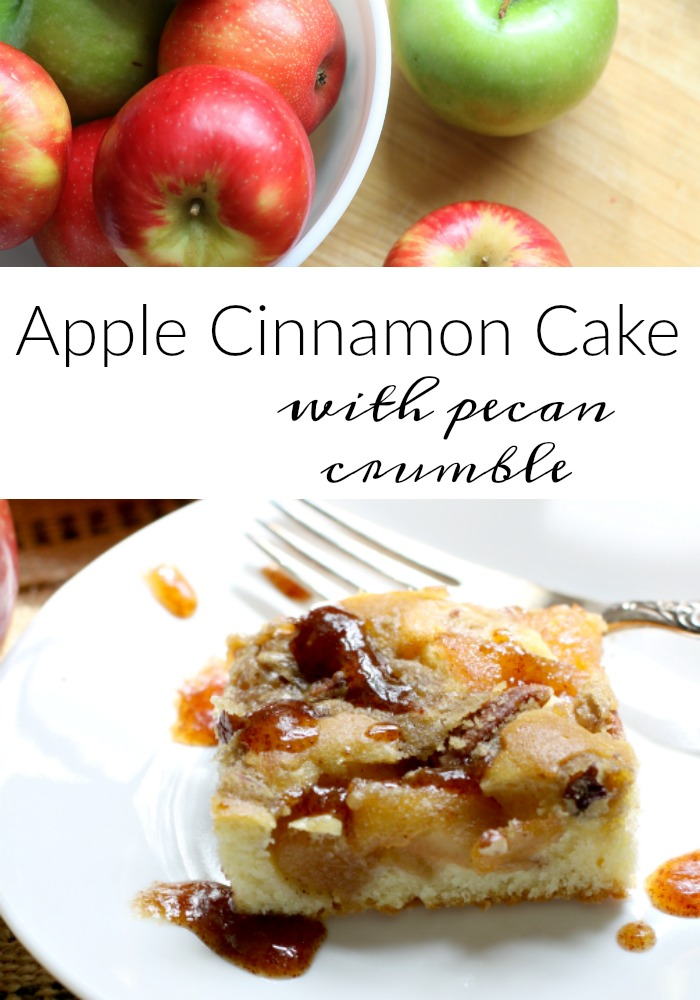 apple-cinnamon-cake-with-pecan-crumble-love-of-home