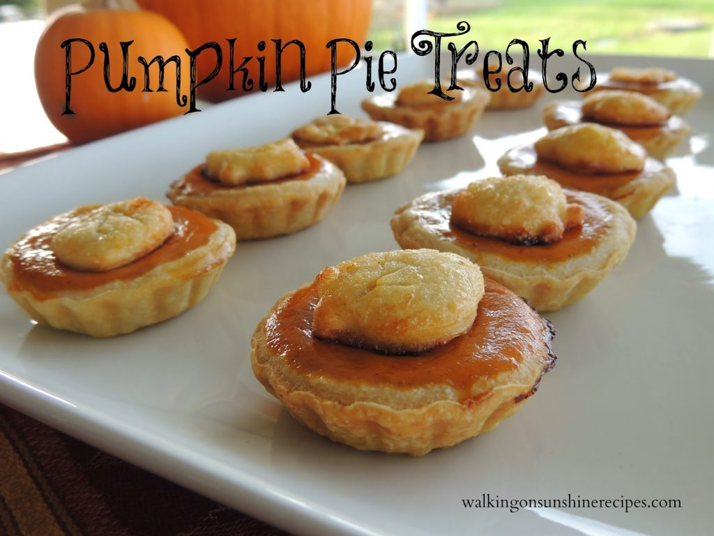 mini-pumpkin-pies-4-promo