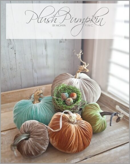 Plush-Pumpkin-Graphic-bHOME-1